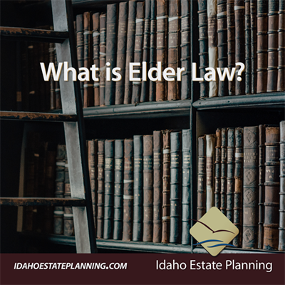 Everything You Need to Know about Elder Law
