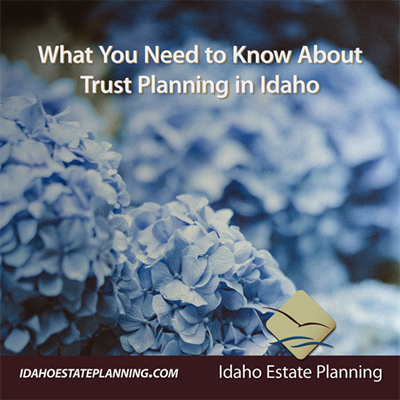 What You Need to Know About Trust Planning in Idaho