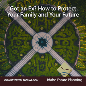 Got an Ex? How to Protect Your Family and Your Future